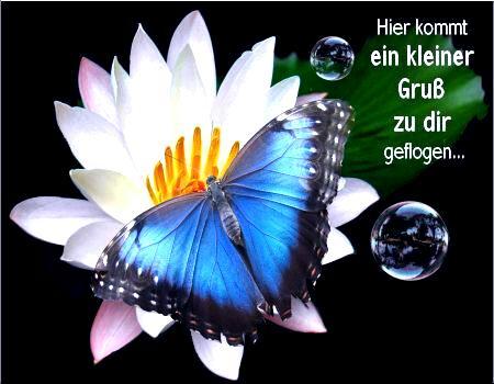 awww.abnehmen_aktuell.de_images_abnehmen_bilder_2010_06_46461gbpicseu_1.jpg