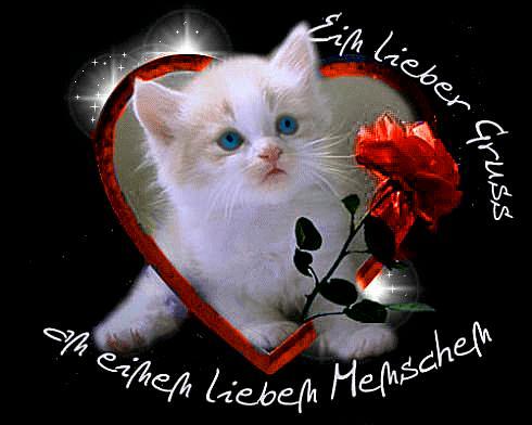 awww.abnehmen_aktuell.de_images_abnehmen_bilder_2010_07_44352gbpicseu_1.jpg