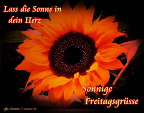awww.abnehmen_aktuell.de_images_abnehmen_bilder_2011_08_096_1.jpg