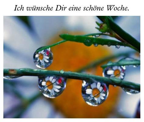 awww.abnehmen_aktuell.de_images_abnehmen_bilder_2012_01_001_1.jpg