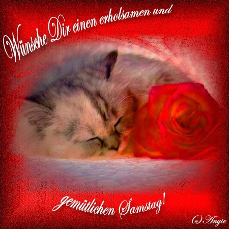 awww.abnehmen_aktuell.de_images_abnehmen_bilder_2012_02_1253910100_1.jpg