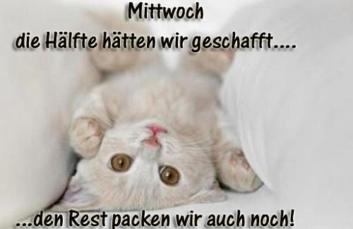 awww.abnehmen_aktuell.de_images_abnehmen_bilder_2012_03_1265749600_1.jpg