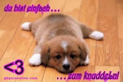 awww.abnehmen_aktuell.de_images_abnehmen_bilder_2012_05_036_1.jpg