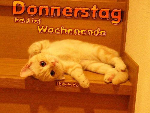 awww.abnehmen_aktuell.de_images_abnehmen_bilder_2012_05_1329346196_1.jpg