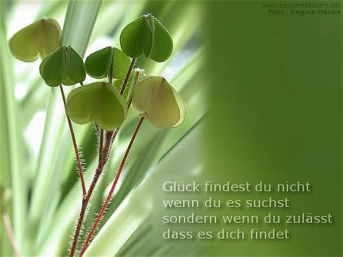 awww.abnehmen_aktuell.de_images_abnehmen_bilder_2012_05_gluecksbringer20_1.jpg