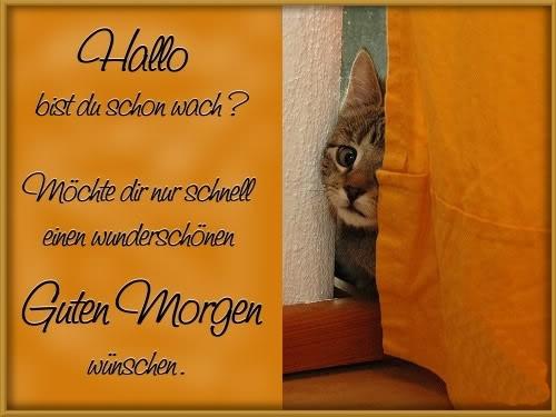 awww.abnehmen_aktuell.de_images_abnehmen_bilder_2012_08_1287396270_1.jpg